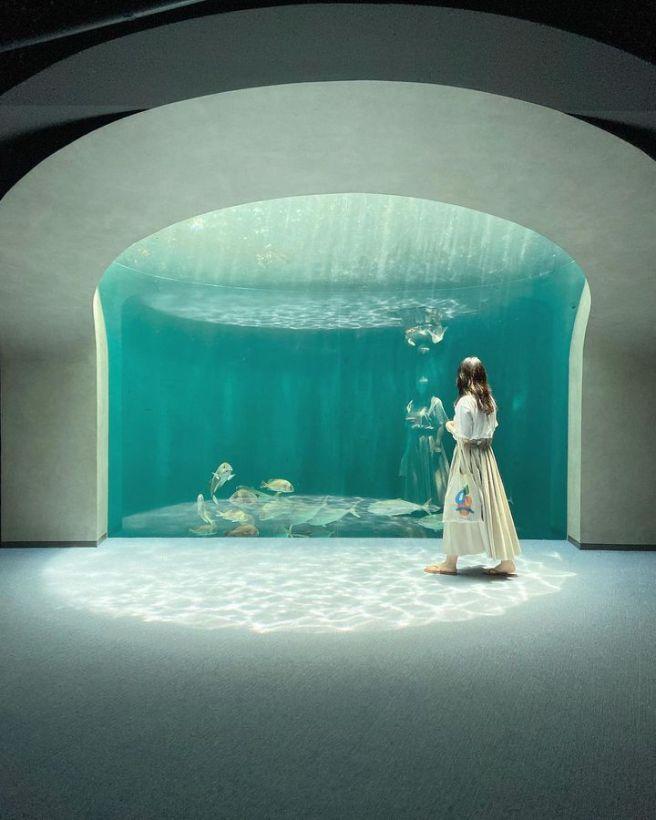 香川県 四国水族館